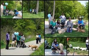 صحنه هایی از راهپیمایی با سگ ها