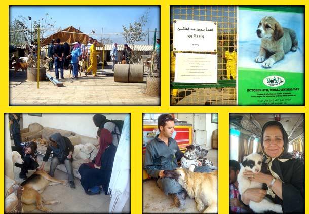 صحنه هایی از بازدید دوستان وفا از پناهگاه