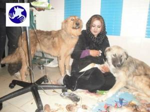 ژیلا پورایرانی با دو تن از ساکنان پناهگاه در درمانگاه