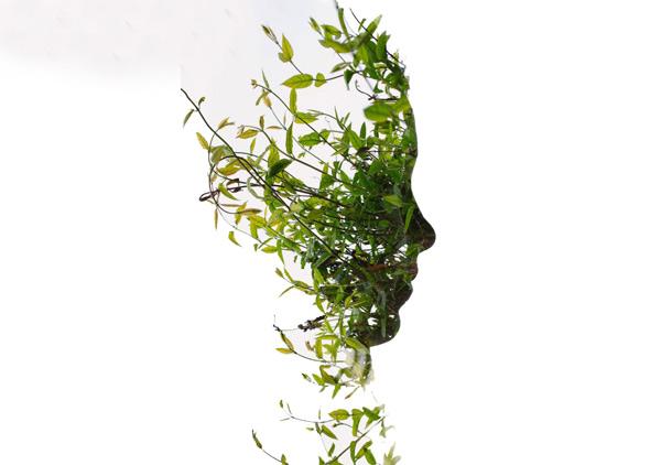 green-mind-H2