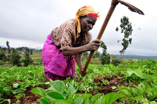 Kenya_women-work