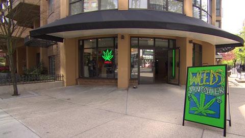 marijuana-store-toronto