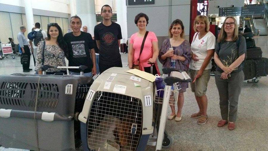 آزاده و ماهان (چهارم و پنجم از راست) مسافرانی که دی کاپریو و امین را با خود آوردند در فرودگاه مورد استقبال تیم وفا قرار گرفتند