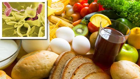 salmonella_food