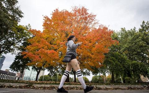fall-warm-toronto